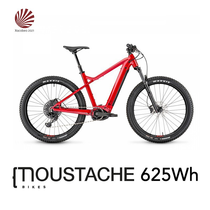 Electric Bicycle Rental 2020