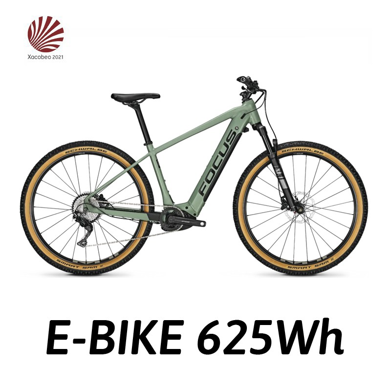 Electric Bicycle Rental 2021